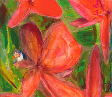 Red frangipanis and green leaves