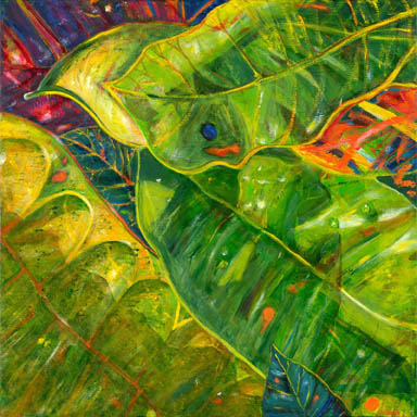 Greens and yellows of croton leaves