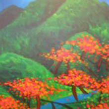 Linda Jackson - poinciana trees in full flower - green hills in background - detail