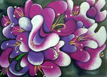 Yoshiko's painting of bougainvilia - pinks and purples