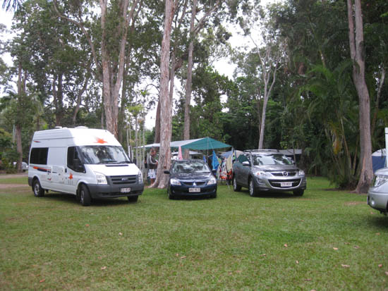 Camping grounds under tall melaleuca trees