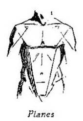 diagram of straight lines showing planes of body