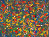 Abstract, brightly coloured birds ( or are they flowers or leaves? ) convey a sense of lushness and excitement about the Australian tropics.