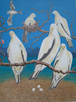 The second in this triptych shows Torres Strait pigeons resting in beach almond trees.