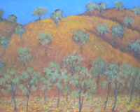 Jim's inland landscape with bare hills and gum trees
