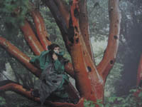 Model weard deep green as she sits in a gum tree