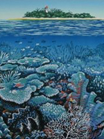 Detail from 'Underwater Wonderland' lino print by Anna Curtis.