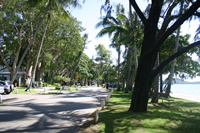 Palm Cove Foreshore