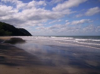 Cape Tribulation