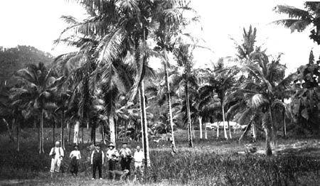 Banfield with friends on the beach at Dunk Island, below the house
