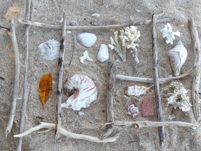 Beach Collection - an inspiration for painting