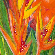 bright orange heliconia flowers