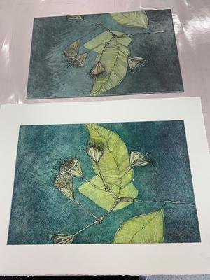 Coralie Gunn - Intaglio plate and prints from a workshop