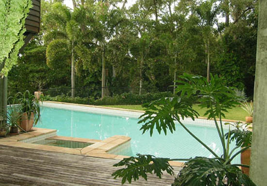 timber deck leads to inground pool, rainforest in the background
