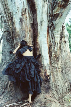 Model leans against tree wearing Black Cockatoo dress.