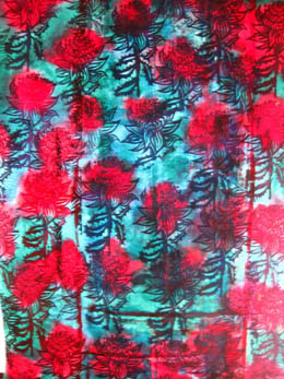 Waratah scroll - outlines of waratah flowers on splodges of turquoise and red