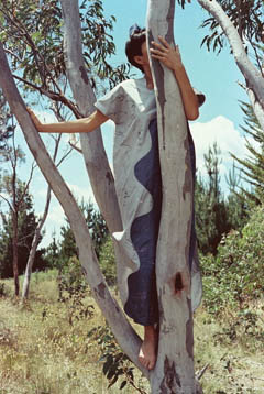 Jenny up a tree wearing scribbly gum dress