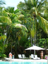 relax in this shaded resort pool in Port Douglas