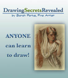 sarah parks drawing secrets book cover