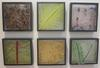 Cast panels depicting flora at Xanadoo,30cms x 30cms x10cms