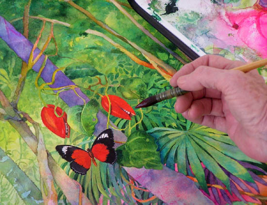 Close up of Gail Shaw painting rainforest watercolour with red butterfly