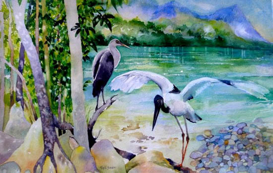 Large birds on edge of river or ocean, forest surrounding
