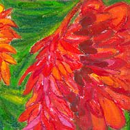 looking into a bright red ginger flower - green leaves behind